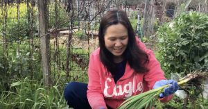 "Yanling Wang holds up garlic she just dug up. She was inspired to get her plot when she visited California and saw the gardens. ""California has great weather,"" says Yanling Wang. ""The soil is very good."""